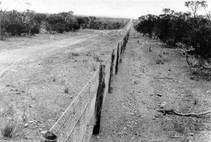 keepspace-rabbit-proof-fence